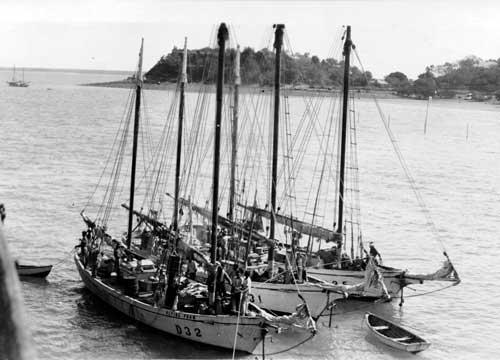 Three pearling luggers moored at anchor Darwin Jetty, Darwin NT